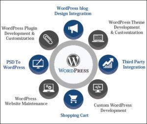 Magento WordPress Website Development