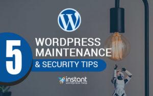 WordPress Maintanance Service