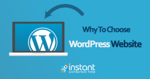 wordpress customizing