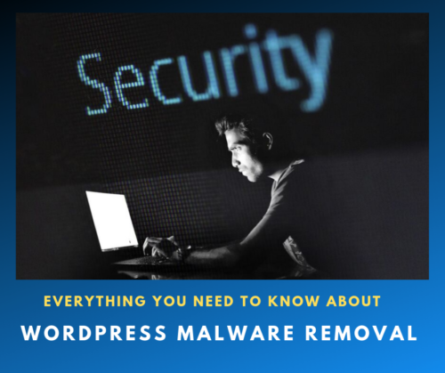 Everything You Need To Know About WordPress Malware Removal