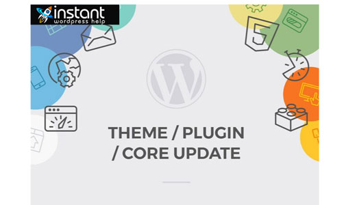Update WordPress Plugin